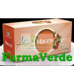 Ceai de Macese 20 doze Larix