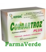 Condartroz Plus 60 cpr Hofigal