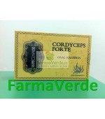Cordyceps Forte Fiole 6x30Ml Amedsson
