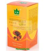 Ganoderma 120 capsule 425 mg- ganoderma lucidum Yong Kang