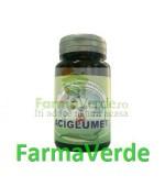 Aciglumer 30 cps Herbavit