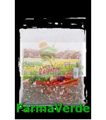 Amestec de legume uscate Condiment 125 gr SANO VITA