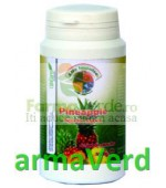 Life Impulse Ananas Powder adjuvant digestiv BIO