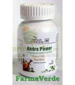 Andro Power 60Cps Zenit Overseas