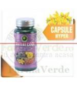 Antialcool 60 Capsule Hypericum Plant