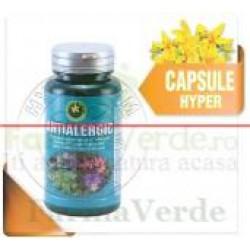 Antialergic 60 Capsule Hypericum Plant