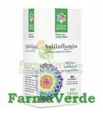 Antiinflamin 60 capsule Steaua Divina