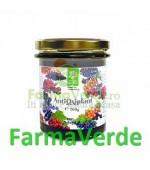 AntiOxiplant in miere 200 gr Steaua Divina