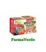 Ceai Aromfruct Goji si Fructe de Padure 20 plicuri Fares Orastie