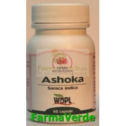 Ashoka TONIC UTERIN 500mg 60 capsule Herba Ayurvedica