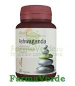 Ashwaganda 20 Cpr Alevia