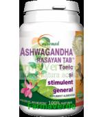 Ashwaganda Rasayan 100 tablete Ayurmed