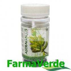 Astragalus Tonic Energetic 100 capsule moi BBM Medical
