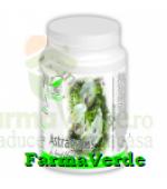 Astragalus 60 capsule ProNatura Medica