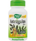 Astragalus Root 100 cps Nature's Way Secom