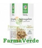 Astragalus 60 capsule 500 mg Steaua Divina