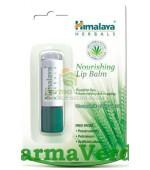 Balsam pentru buze cu Ulei de Morcov Himalaya Herbals