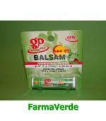 Balsam de buze protector Aloe Vera Gerovital Plant Farmec