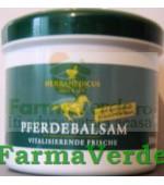 Balsam Camfor si Arnica Relaxant Herbamedicus 500ml Trans Rom
