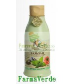 Balsam din plante parfumate pentru toate tipurile de par RC50