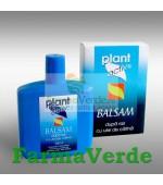 Plant Activ Balsam Dupa Ras cu Ulei de Catina 200 ml