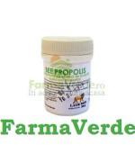 Aur Derm Bee Propolis 30 cpr Laur Med