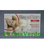 BeneBian Adult 14 capsule Walmark