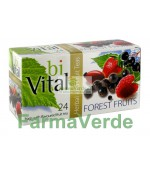 Ceai de Fructe de Padure 24 dz X 2 gr BIVITAL