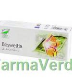 Boswellia Antiinflamator 30 capsule Medica ProNatura