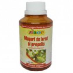 Sirop Muguri de Brad si Propolis 200 ml Pontica