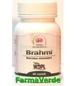 Brahmi Tonic Cerebral 500mg 60 capsule Herba Ayurvedica