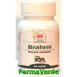 Brahmi Bacopa monnieri Tonic Cerebral 500 mg 60 capsule Herba Ayurvedica