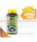Branca- Ursului-Heracleum Spondylium 60 Capsule Hypericum