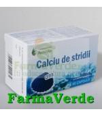 Calciu de Stridii + D3 60 capsule Remedia