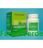 Calmoplant 40 tb PlantaVorel