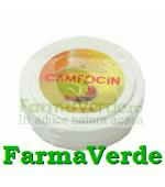 Unguent Camfocin 50 ml DaciaPlant