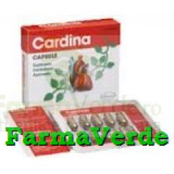 Cardina 30 Capsule GoldenHerbs