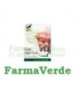 Ceai Agaricus Blazei 20 doze Medica ProNatura
