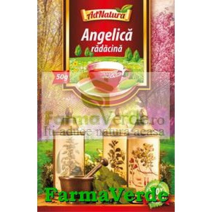 Ceai Angelica Radacina 50 Gr Adserv Adnatura