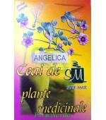 Ceai Angelica Radacina 50 gr Stef Mar