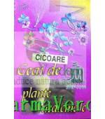 Ceai Cicoare CICHORUIUM INTYBUS 50 gr Stefmar