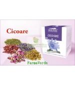 Ceai Cicoare-50 gr DaciaPlant