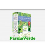 Ceai Circulatoriu-Plant Picioare Fara Varice 150 gr Dorel Plant