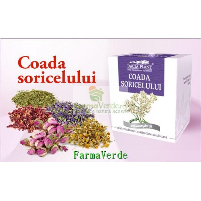 Ceai Coada Soricelului - 50 g DaciaPlant