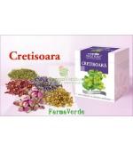 Ceai Cretisoara 50 g DaciaPlant