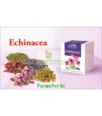 Ceai Echinacea - 50 g DaciaPlant