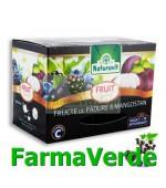 Ceai Fructe de Padure si Mangostan 15 dozeX 2gr Naturavit