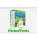 Ceai Hemoro-Plant Colon Sanatos 150 gr Dorel Plant