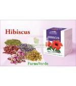 Ceai Hibiscus - 50g DaciaPlant