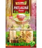 Ceai Patlagina Frunze 50 gr Adnatura Adserv